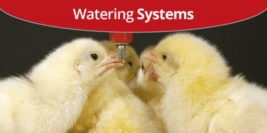 Watering Systems 390x195[1]